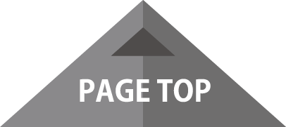 pagetop-icon